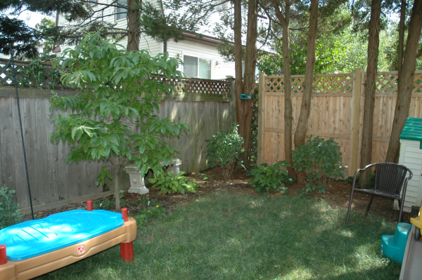 kid friendly backyard designs