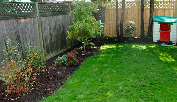 organic lawn care Massachusetts