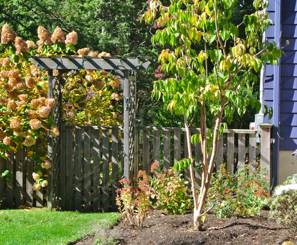 garden arbor designs in massachusetts