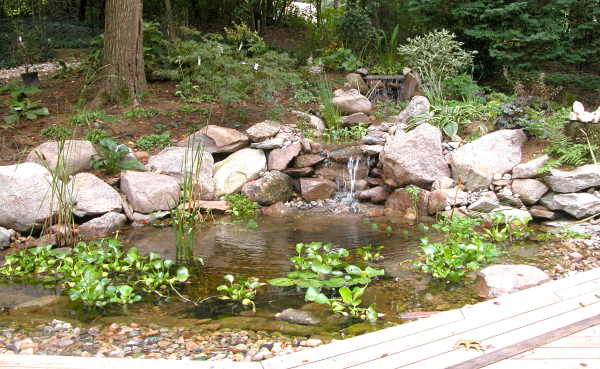healing garden design