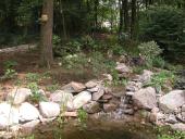 native rock garden