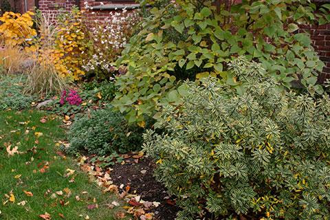 garden2_14.jpg