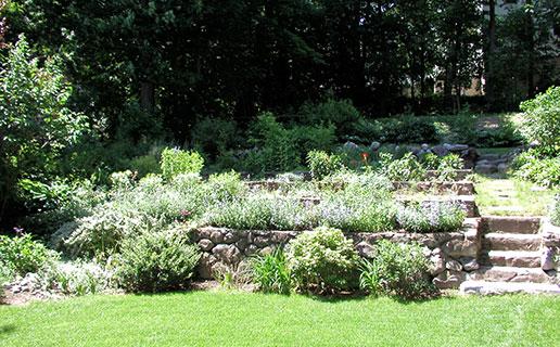 garden2_19.jpg