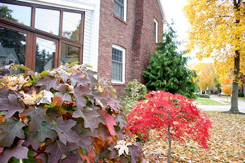 garden2_7.jpg