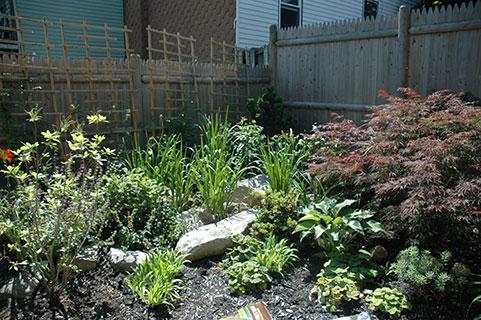 garden2_8.jpg