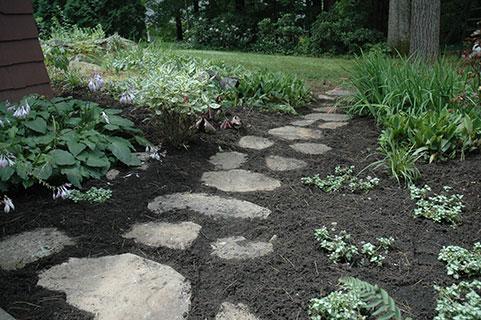 garden soil and hardscape.jpg