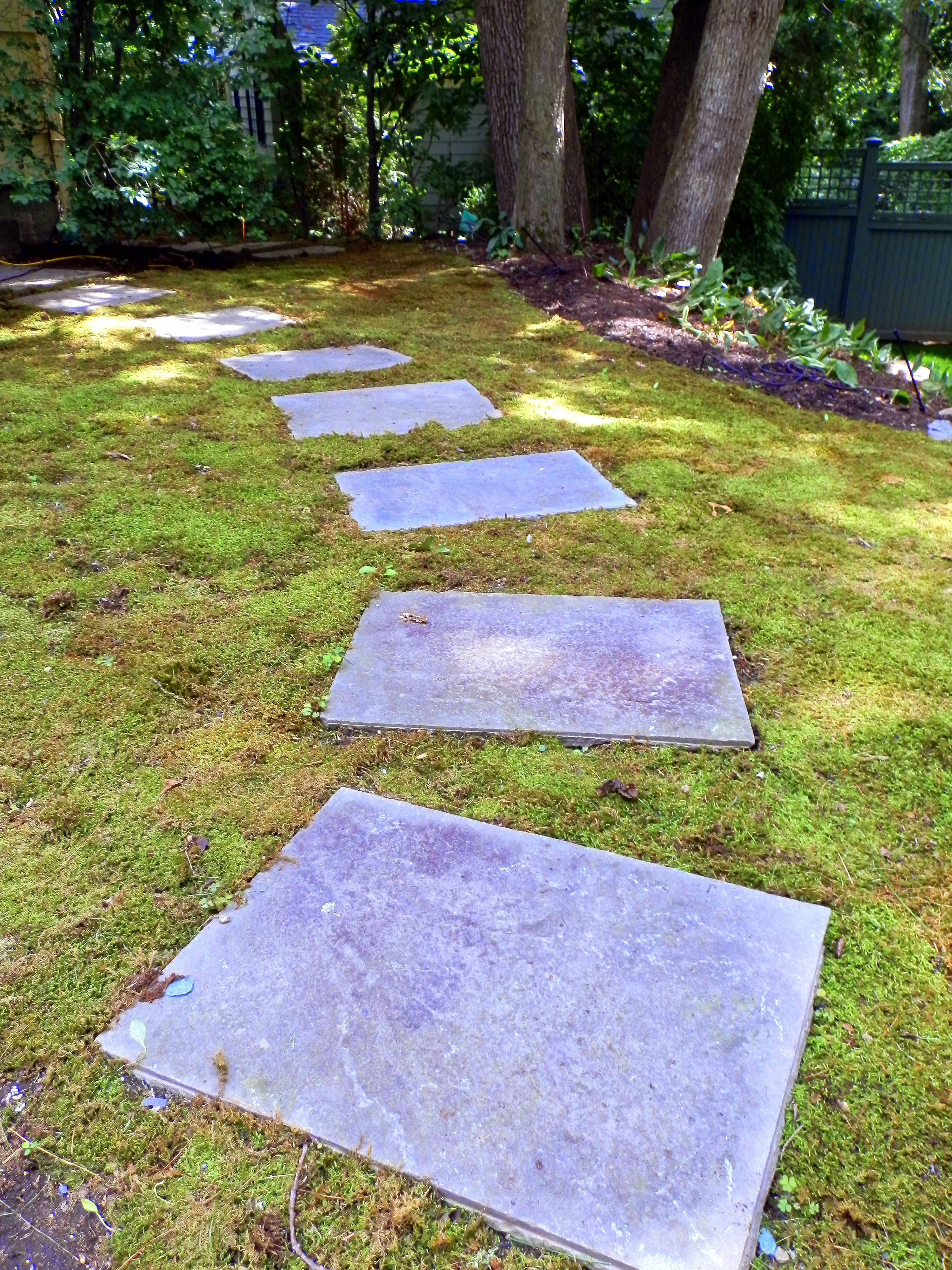 benefits of using moss