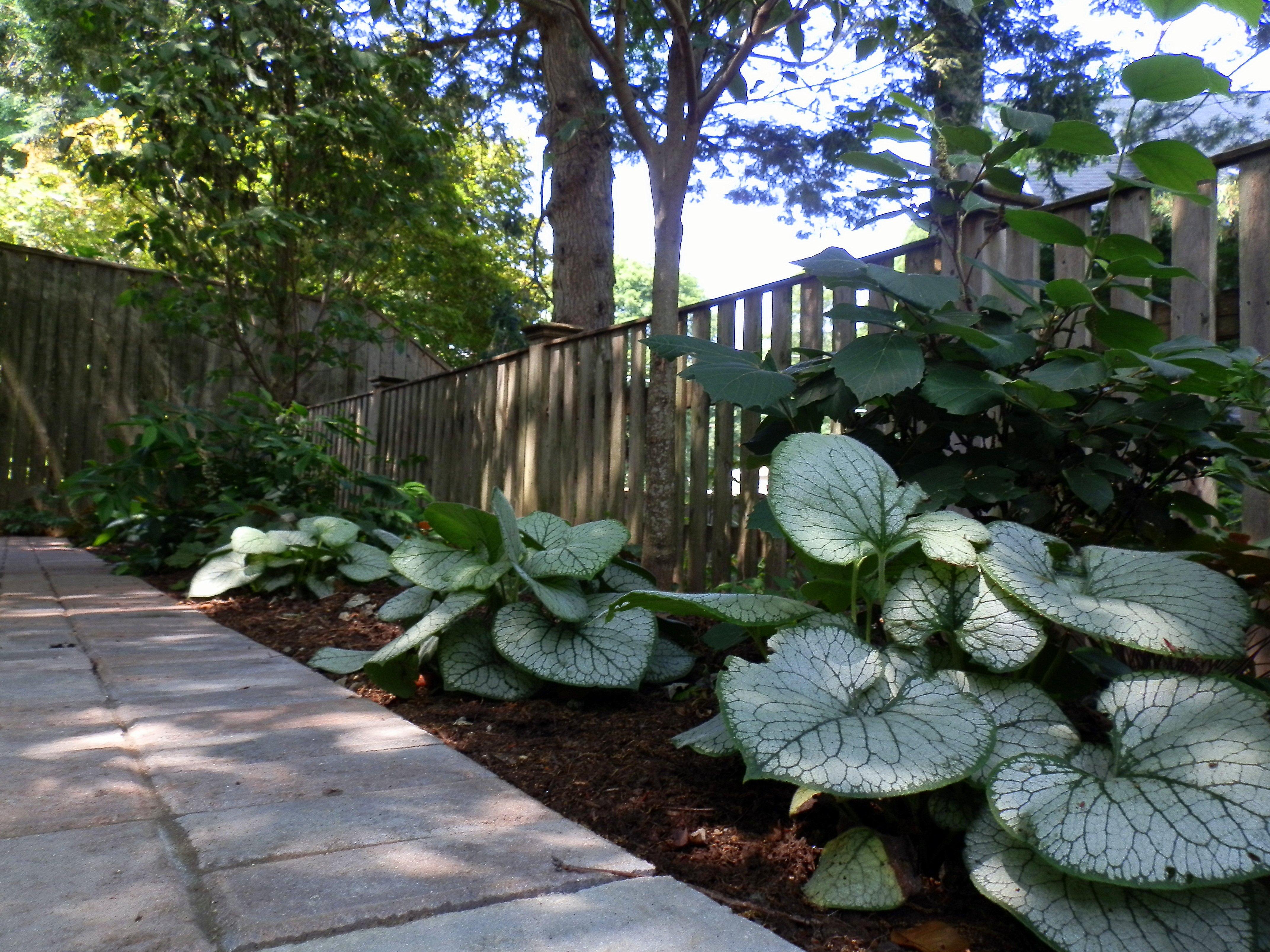 Customized shade garden design for Shade garden designs