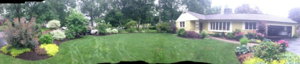 front yard landscape design belmont massachusetts