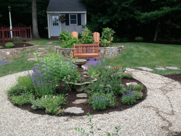 New England native plants