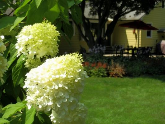 custom landscaping