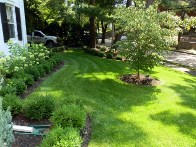 custom landscape services