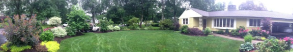 residential landscape design belmont, ma