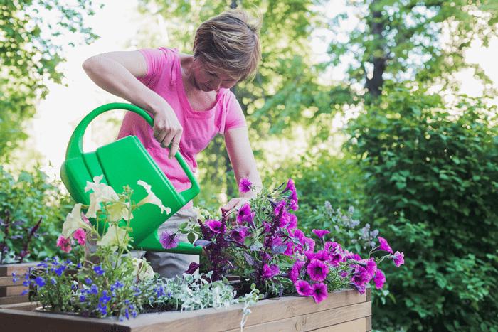 annual-container-garden