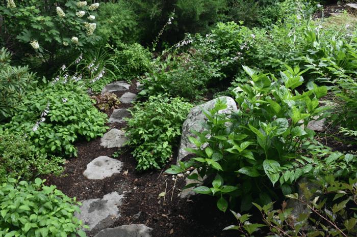 environmental benefits outdoor landscape