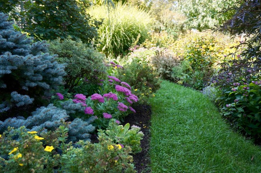 landscape-mulch