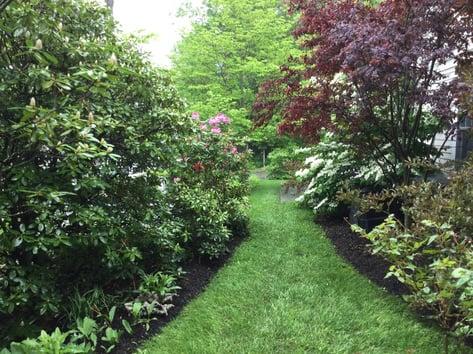 organic-gardening-2-1