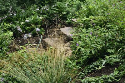 personal-benefits-outdoor-landscape
