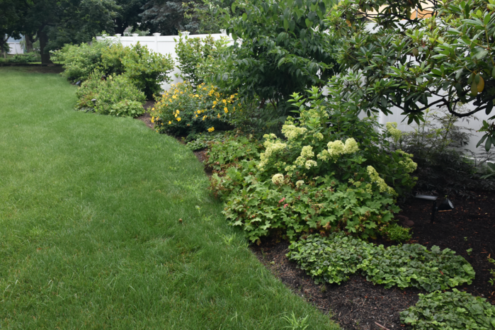 soil-is-everything-when-sustainable-landscaping