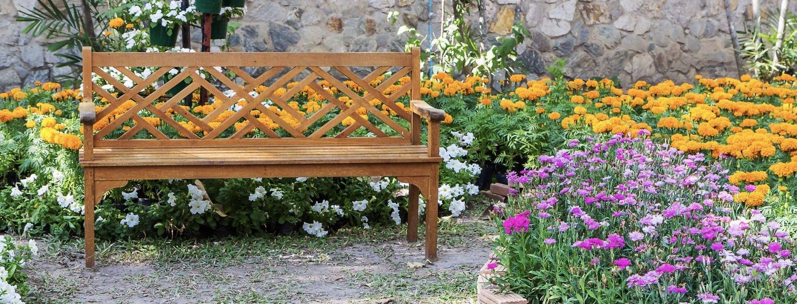contemplation garden design