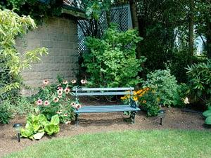 backyard-contemplation-area
