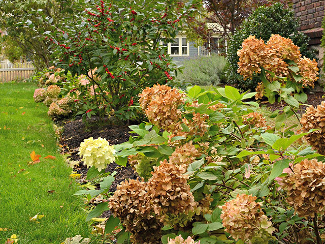 Fall-landscape-plantings