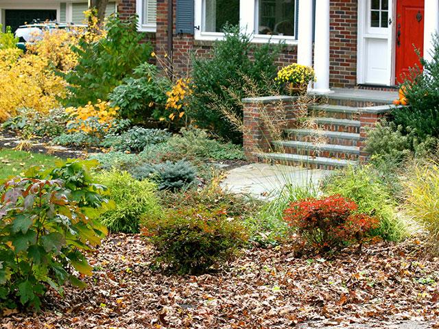 fall-landscape-plants