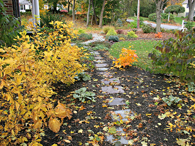 fall-strolling-garden