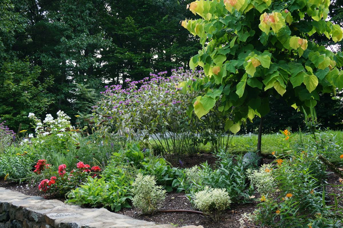 texture-color-gardens-4