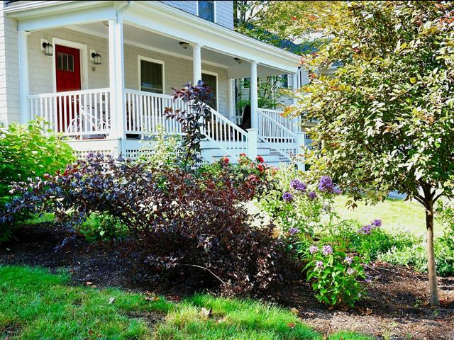 front yard landscape pruning