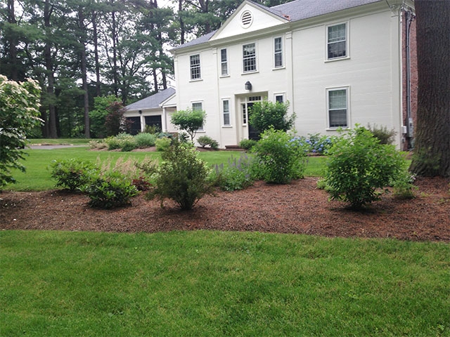 front-of-house-plantings