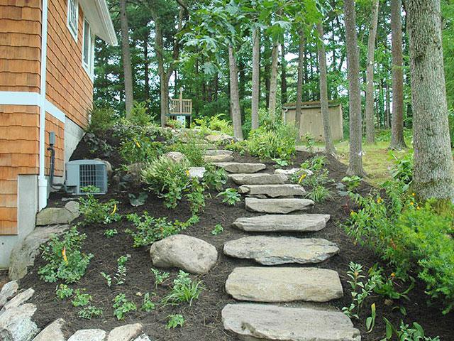 woodland-walkway-1.jpg