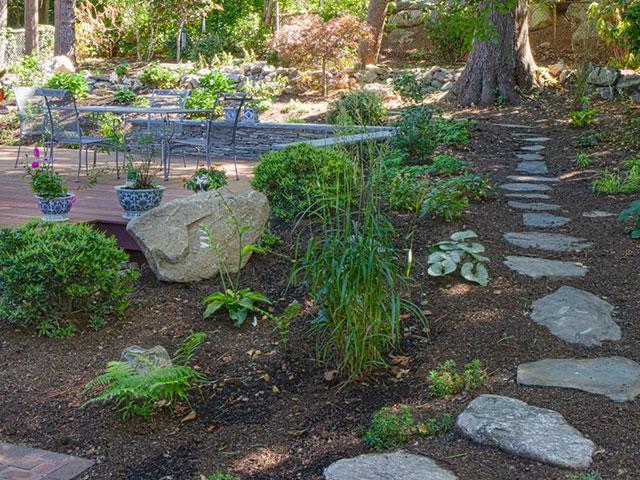 woodland-walkway-3.jpg