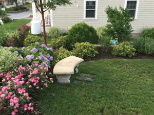 ecological-yard-care