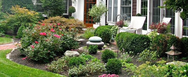 landscape garden front yard