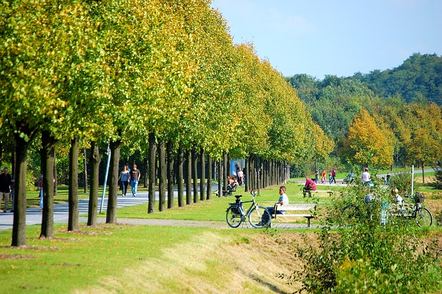 nordsternpark-346283_640.jpg