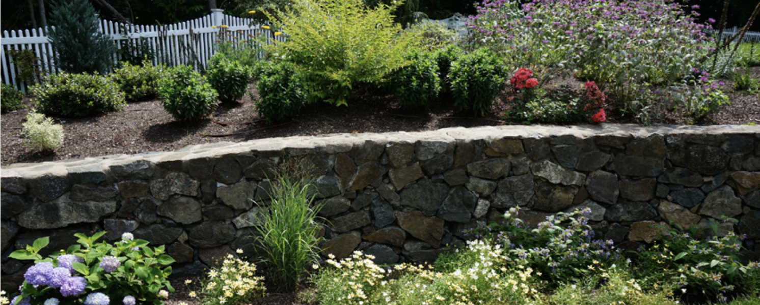 How to Maintain Your Landscape and Transform It Into a Beauty You'll Love