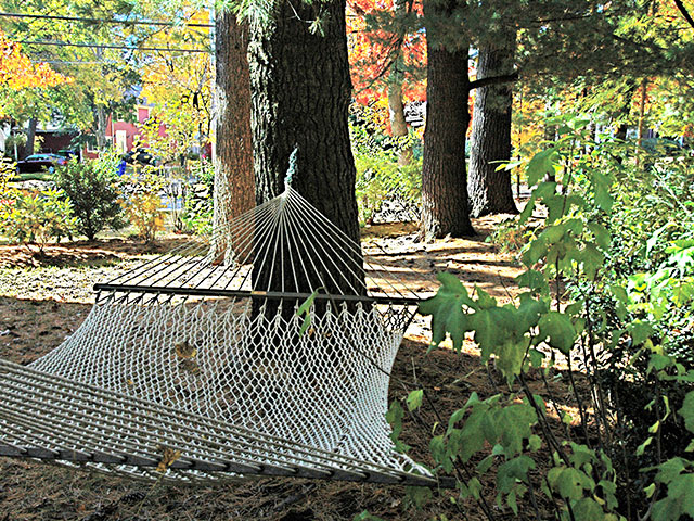 contemplation-area-with-hammock.jpg