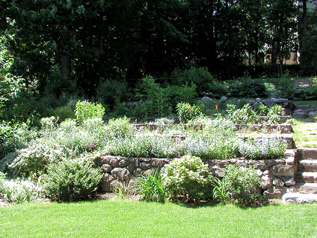 terraced-garden.jpg