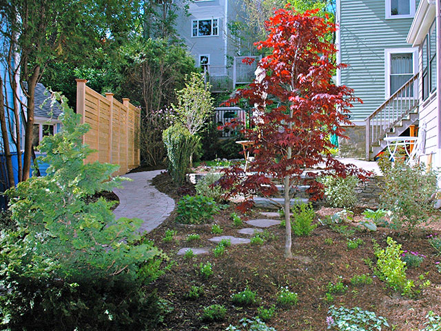 multi-colored-texture-garden.jpg