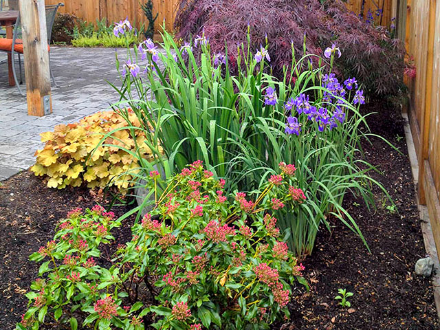 patio-garden-with-color-and-texture.jpg
