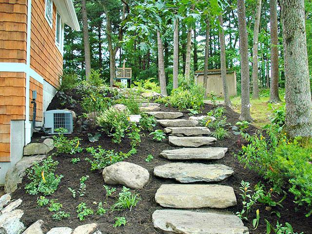 woodland-walkway.jpg